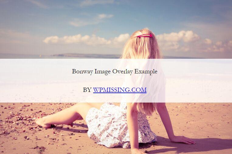 Add Customizable Caption Overlay To Images - Bonway Image